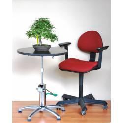 Imagén: Torno Hidráulico GreenT Plus para trabajar bonsai. Profesional