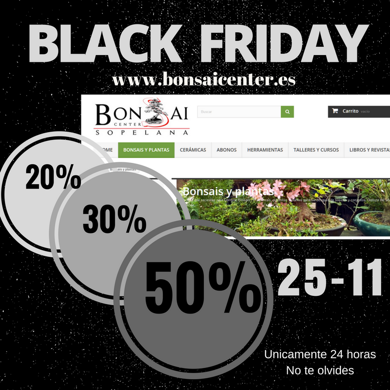 http://bonsaicenter.es/#blockspecials
