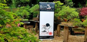 Germade Bonsai School-Bonsai Center Sopelana (3)