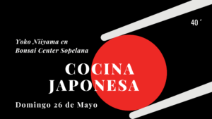 Japón en la cazuela de Bonsai Sopelana.