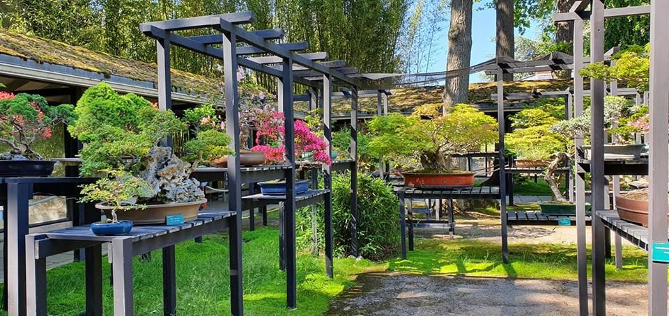 Parc Floral de Paris.