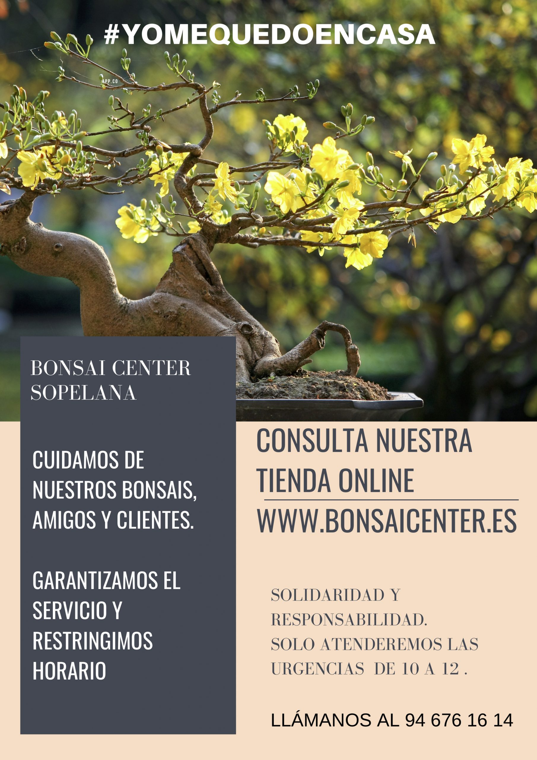 Comunicado Bonsai Center Sopelana