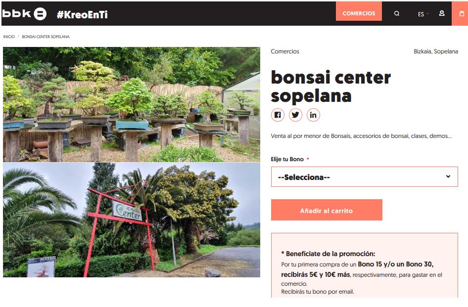 Bonsai #KreoEnTi