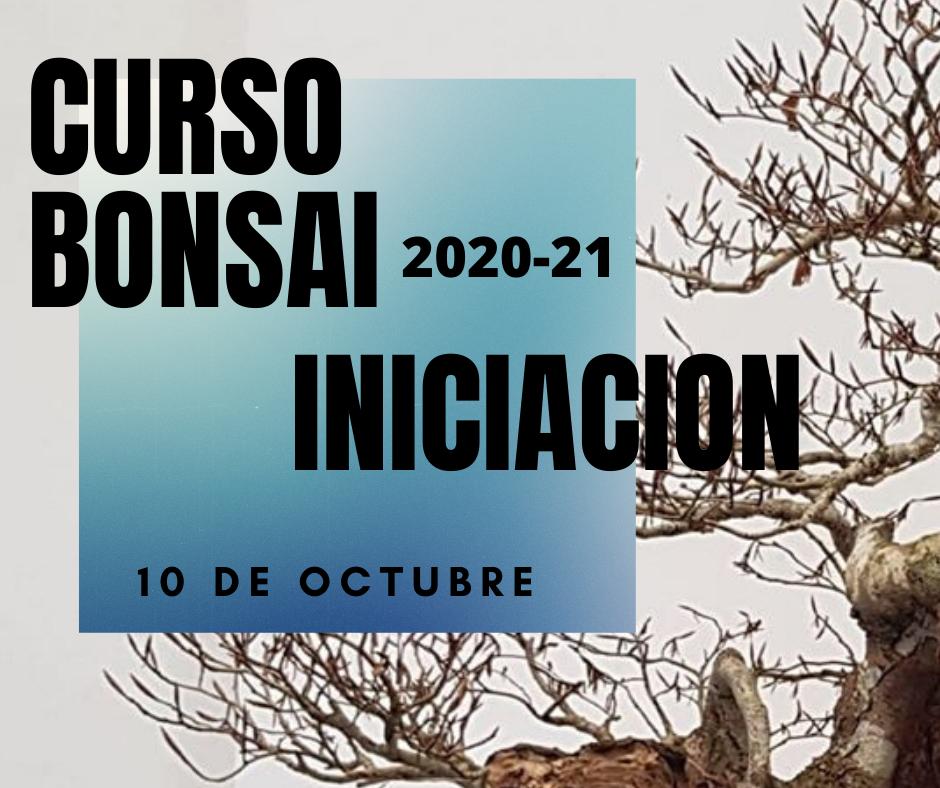 CURSOS y TALLERES BONSAI 2020-2021