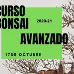 CURSO BONSAI AVANZADO 2020-2021