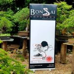 Escuela de Bonsai, Invierno
